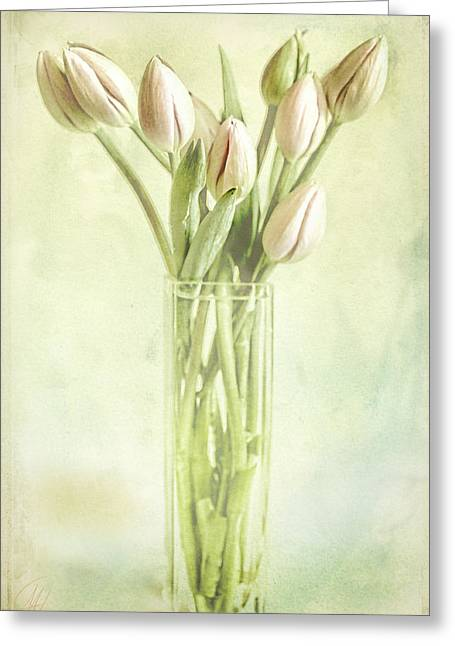Watercolour Tulips  Greeting Card by Margaret Hormann Bfa