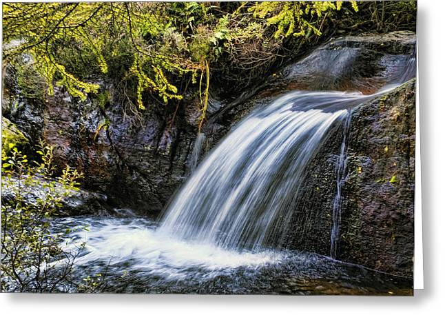 Greeting Card featuring the photograph Waterfall by Hugh Smith