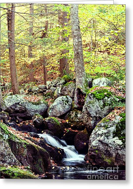 Waterfall II Greeting Card by HD Connelly