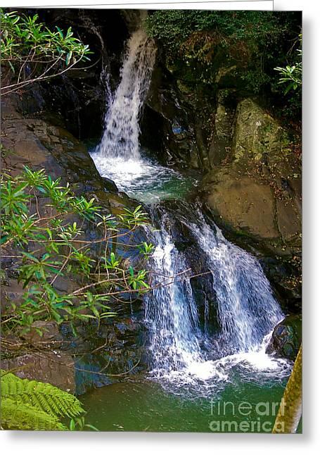 Waterfall In The Currumbin Valley Greeting Card