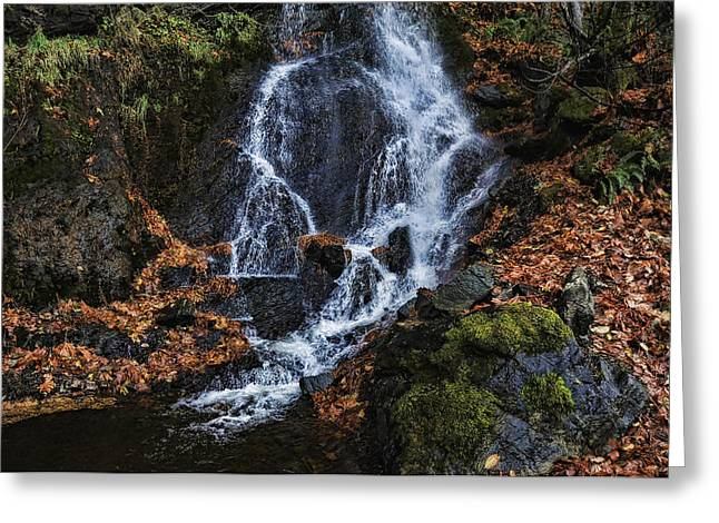 Waterfall Greeting Card by Lawrence Christopher