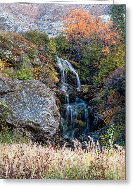 Greeting Card featuring the photograph Waterfall Marion Creek by Gary Rose