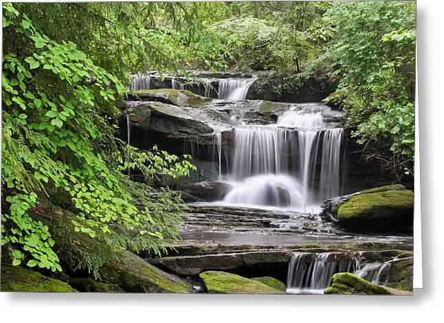 Waterfall Near Mabbitt Spring Greeting Card