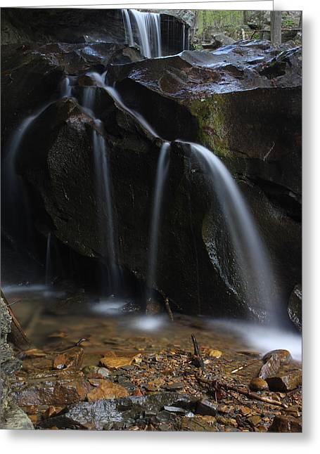Greeting Card featuring the photograph Waterfall On Emory Gap Branch by Daniel Reed