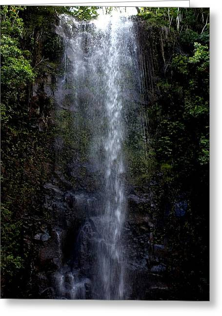 Waterfall Greeting Card by Luis and Paula Lopez
