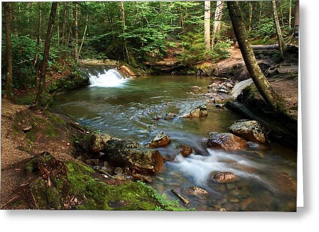 Waterfalls At The Basin Greeting Card by David Gilman