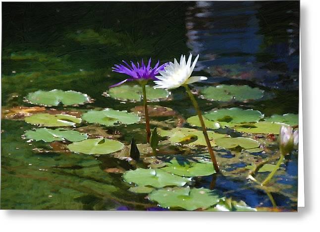 Waterlilies 1 Greeting Card
