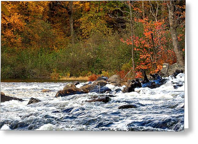 Waters Of Algonquin Greeting Card