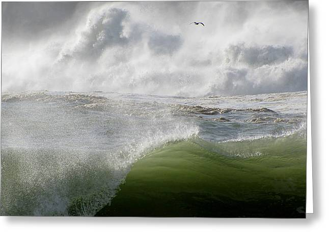 Greeting Card featuring the photograph Wave by Barbara Walsh