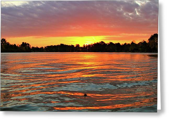 Waves And The Sun Greeting Card by Mike Stouffer