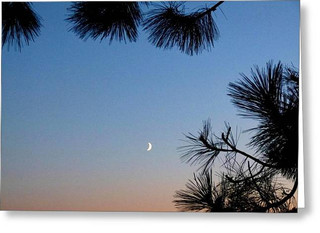 Waxing Crescent Moon 2 Greeting Card by Will Borden