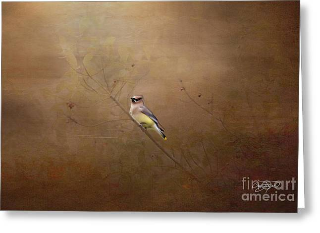 Waxwing Spring Visit Greeting Card by Cris Hayes