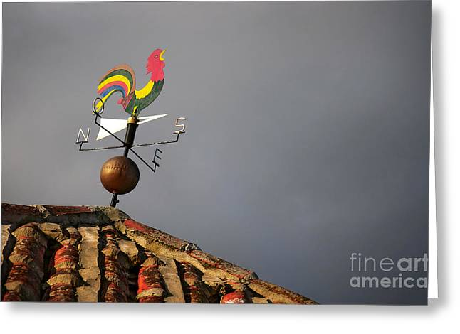 Weather Vane Greeting Card by Carlos Caetano