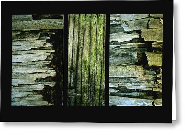 Weathered Greeting Card by Ann Powell