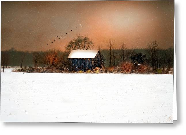 Greeting Card featuring the photograph Weathered by Mary Timman
