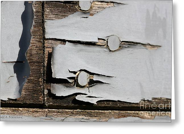 Greeting Card featuring the photograph Weathered by Todd Blanchard