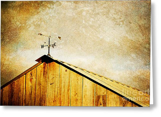 Weathervane Greeting Card by Joan McCool