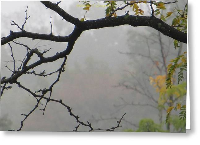 Wednesday Mist Greeting Card by Sonali Gangane