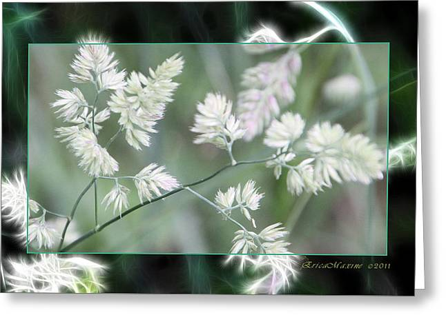 Greeting Card featuring the photograph Weeds by EricaMaxine  Price