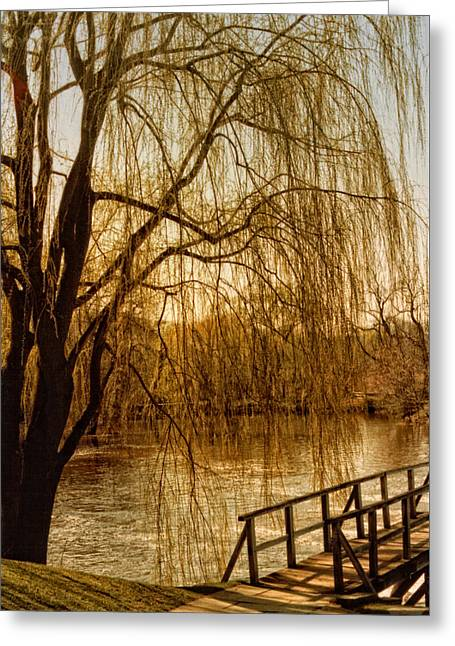Weeping Willow And Bridge Greeting Card by Barbara Middleton