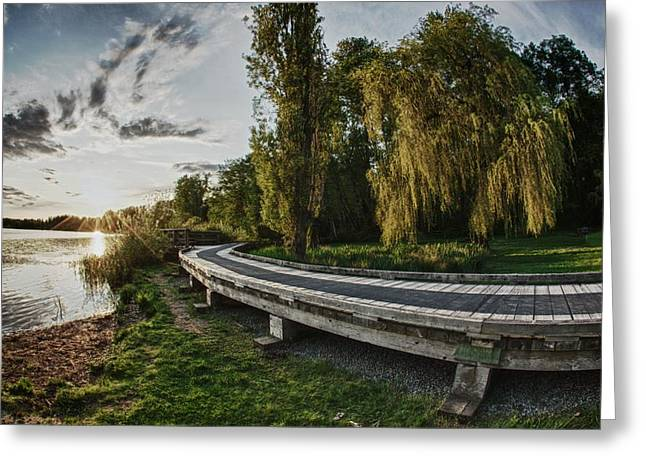 Greeting Card featuring the photograph Weeping Willow Boardwalk by Scott Holmes