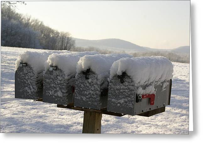 Welcomed Mail Greeting Card by Margaret Steinmeyer