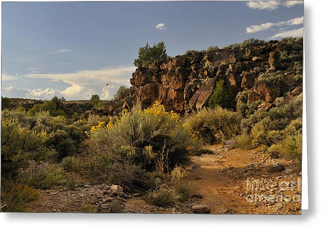 Westward Across The Mesa Greeting Card