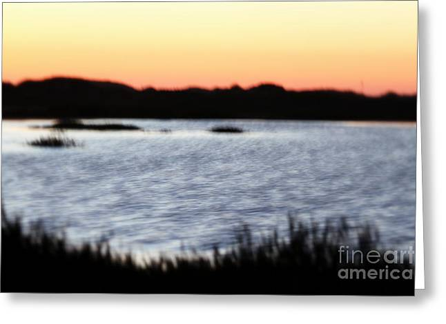 Greeting Card featuring the photograph Wetland by Henrik Lehnerer