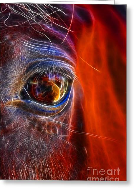 What Are You Looking At Now? Greeting Card