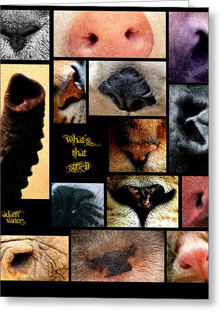 What's That Smell Greeting Card by Adam Vance