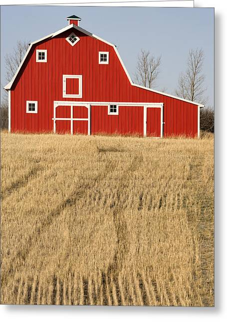 Wheat Fields And A Red Barn Greeting Card