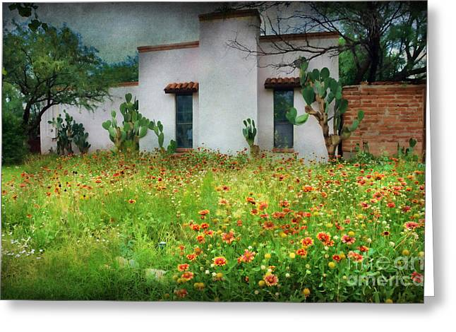 When A House Is A Home Greeting Card by Barbara Manis