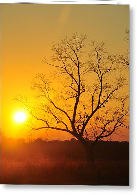When The Day Is Over Greeting Card by Jan Amiss Photography