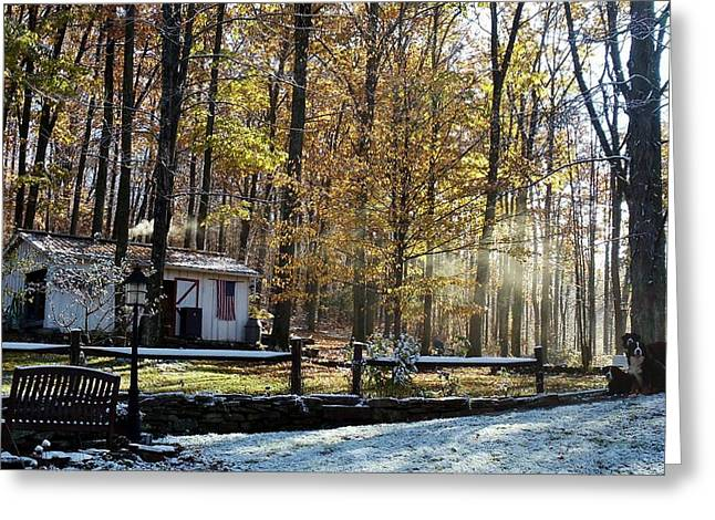 Where Fall Meets Winter Greeting Card by Jennifer Compton
