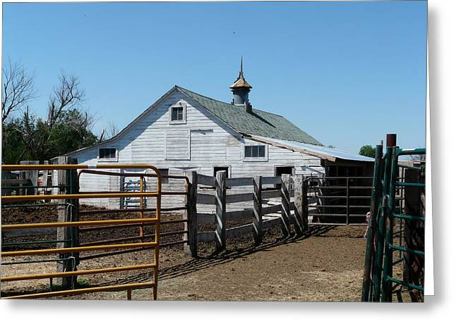 White Barn  And Corrals Greeting Card by Bobbylee Farrier