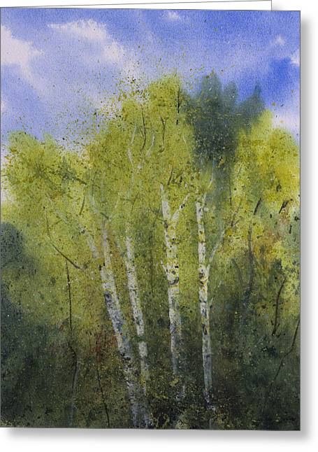 White Birch Trees Greeting Card by Debbie Homewood