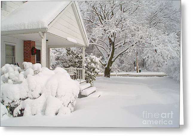 White Blanket Greeting Card by Donna Cavender