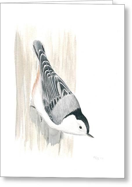 White-breasted Nuthatch Greeting Card by Anna Bronwyn Foley