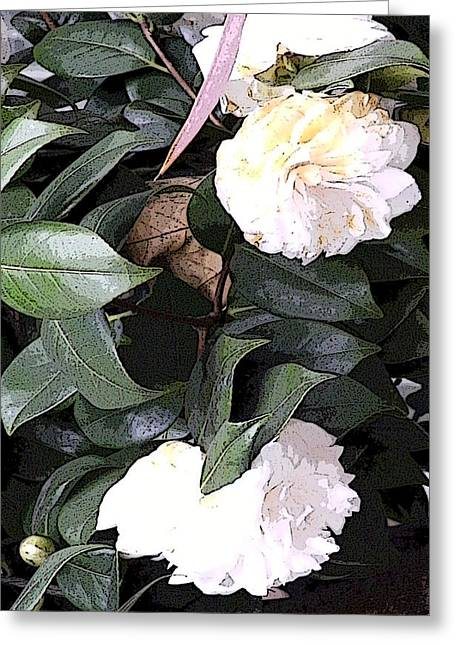 White Camellia Greeting Card by Mindy Newman