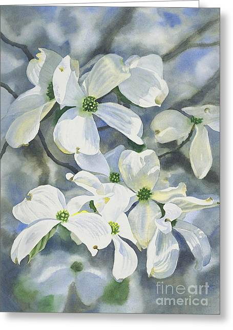 White Dogwood Greeting Card by Sharon Freeman