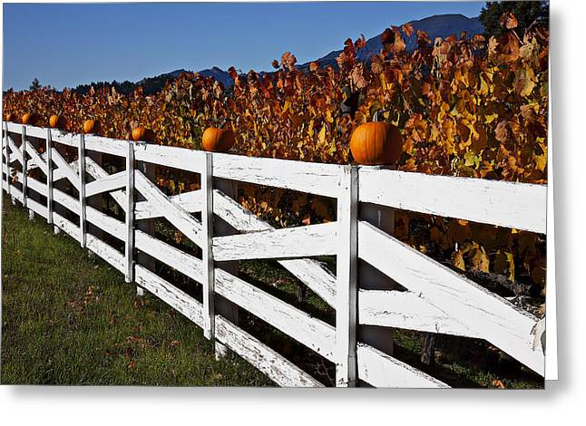 White Fence With Pumpkins Greeting Card