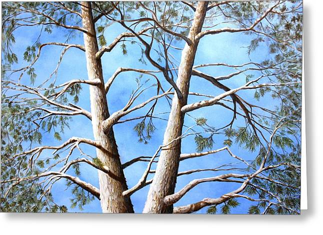 White Fir Tree Greeting Card by Ron  Markowitz