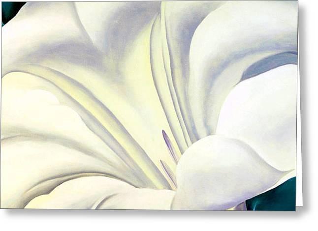 White Flower 10 Greeting Card by Sumit Mehndiratta