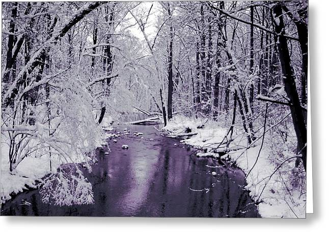 White Forest Greeting Card by Jan Lakey