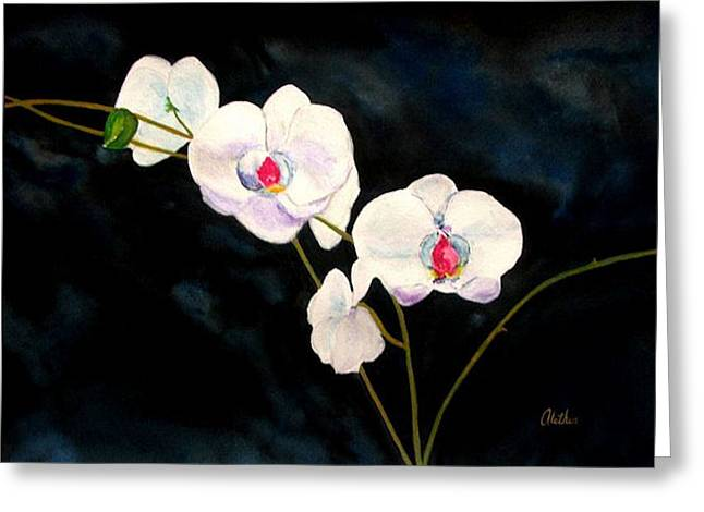 White Orchids Greeting Card by Alethea McKee