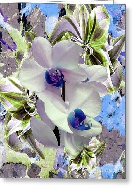 White Orchids And A Touch Of Blue Greeting Card by Doris Wood
