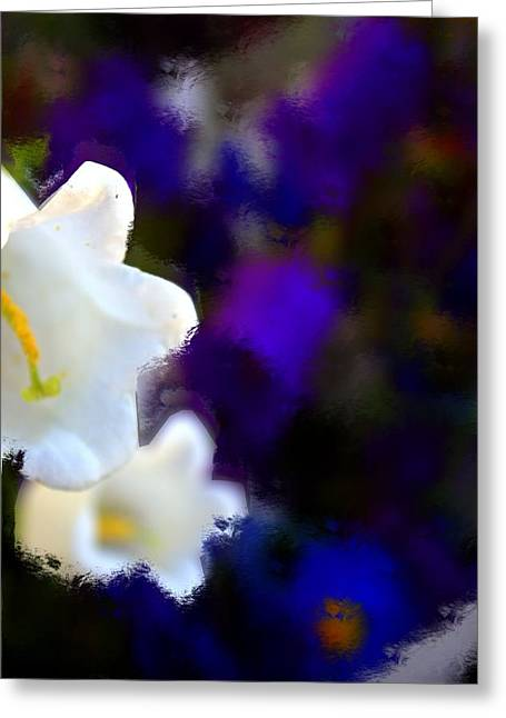 White Purple Greeting Card by Terence Morrissey
