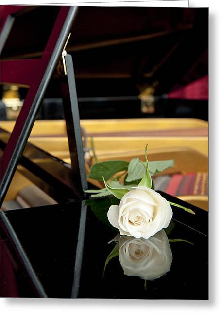White Rose And Its Reflection Greeting Card by Corepics
