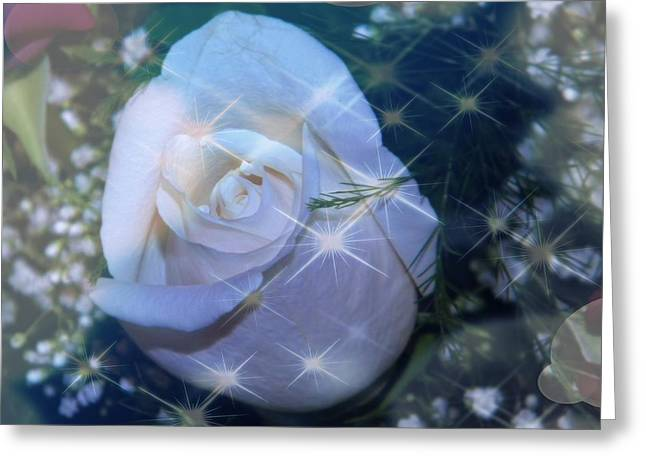 Greeting Card featuring the photograph White Rose by Michelle Frizzell-Thompson