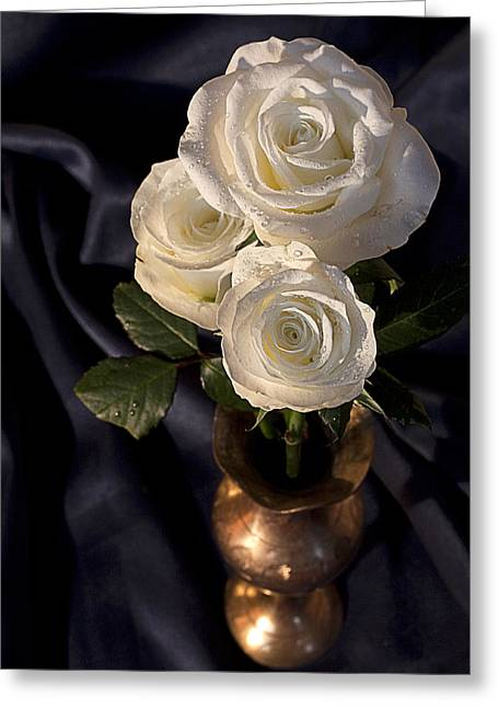 White Roses Greeting Card by Shirley Mitchell